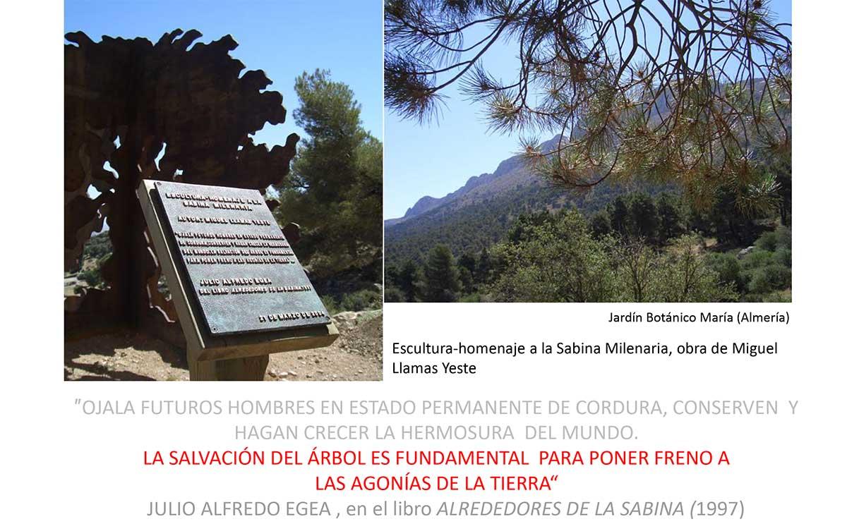 Tecnolog a apropiada para frica ecolog a for Jardin botanico almeria